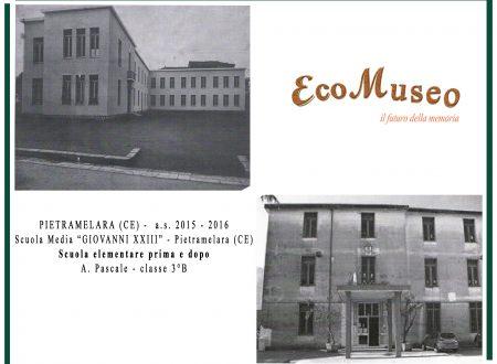 Ecologicamente Click Art 2015-2016